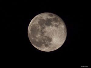 """Pink"" moon"